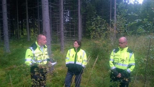 Exploring the Finnish forest industry