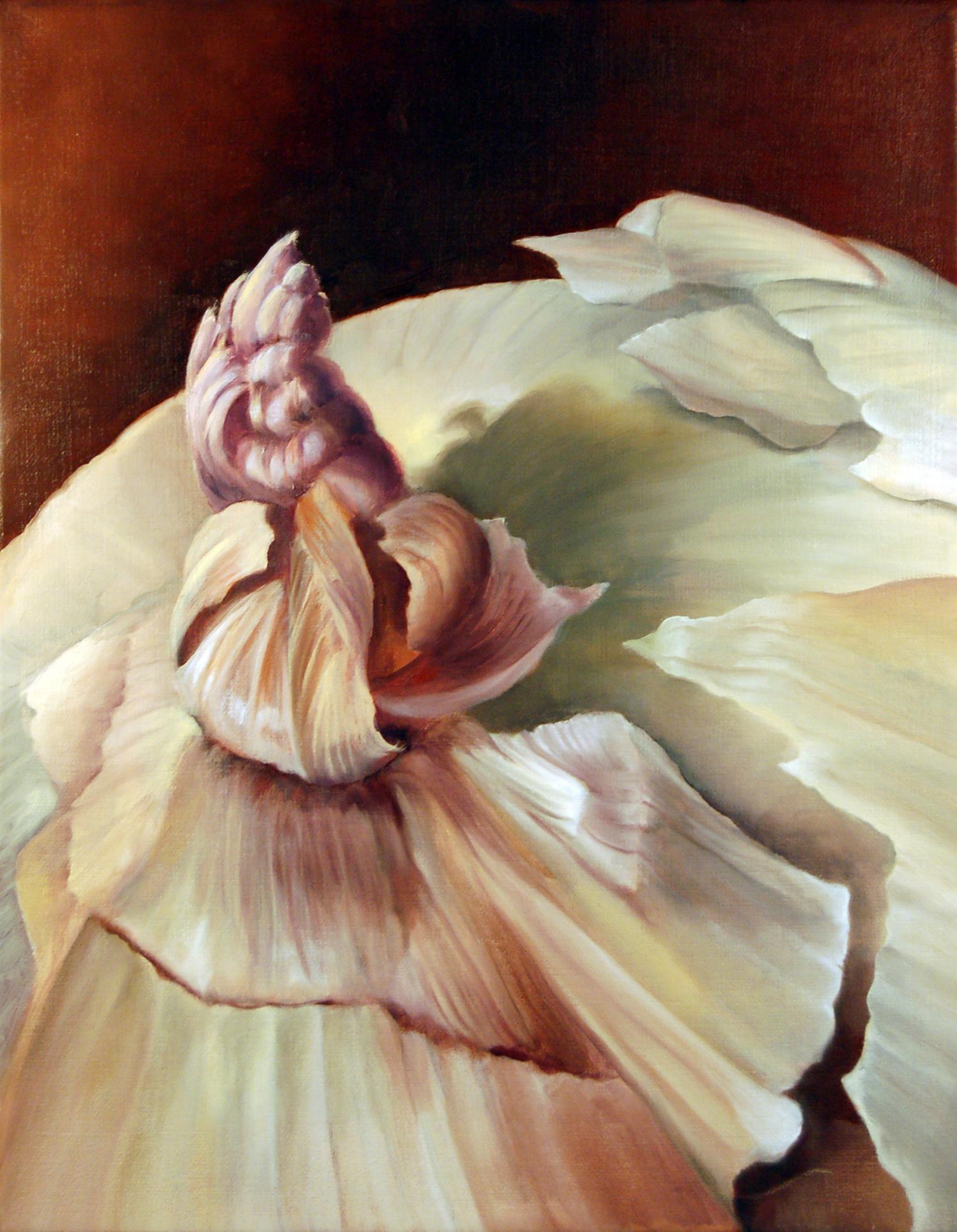 Ruminations on Mortality: Onion 2
