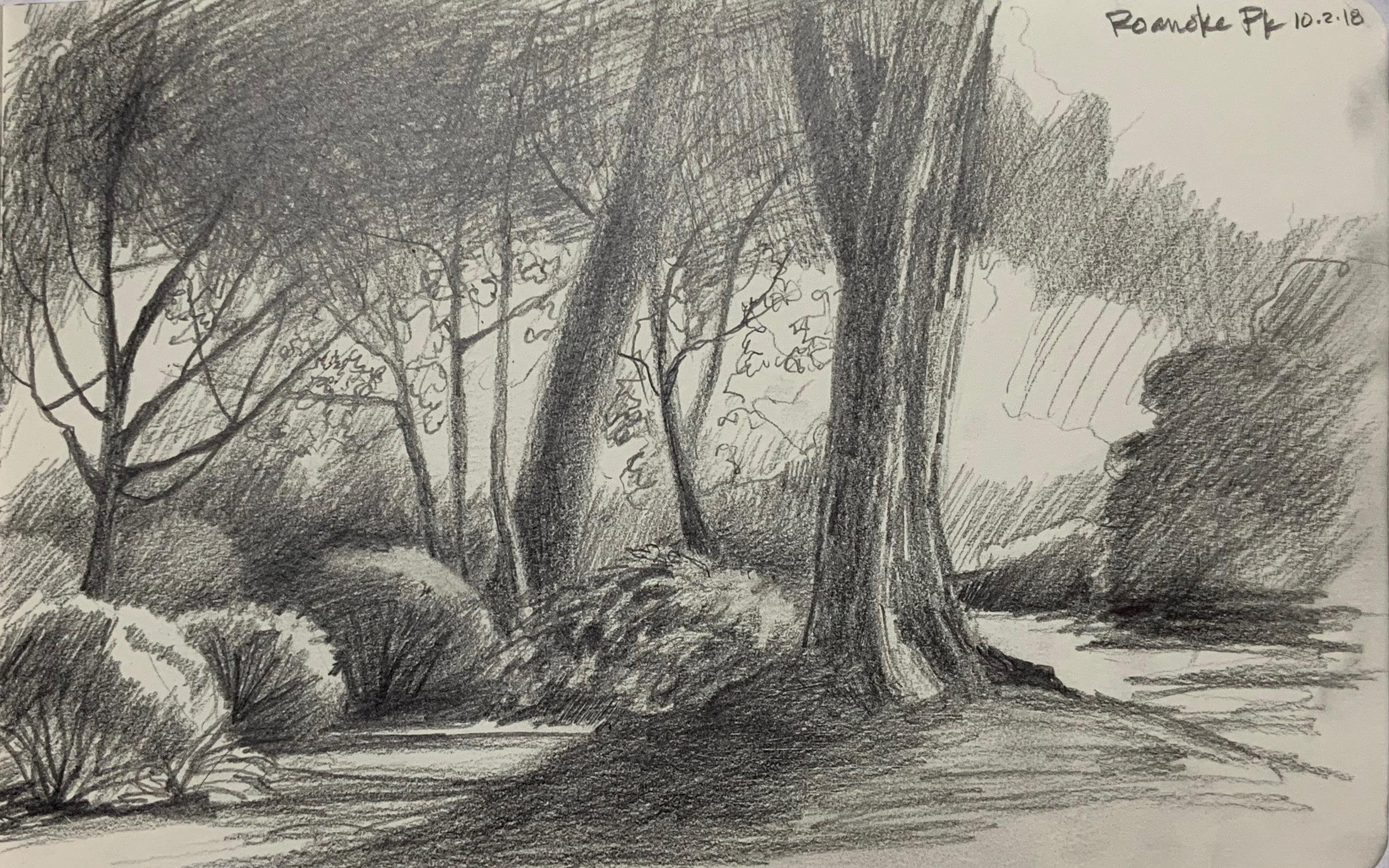 """""""Roanoke Pk Sketch"""""""