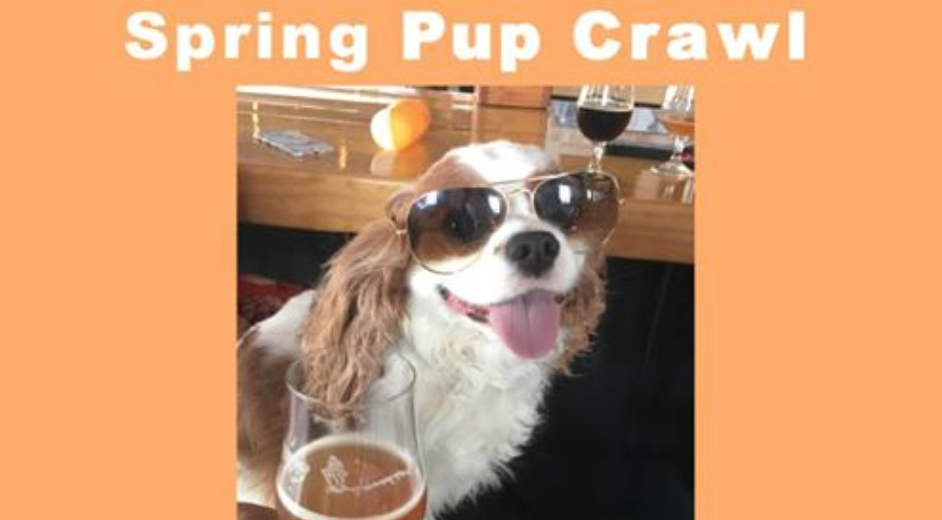 spring pup crawl dallas state and allen