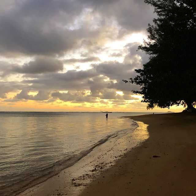 Been waking up everyday early enough to catch the sunrise ✨ - #kauai #aninibeach #sunrise #kauicamper #latergram #camping #travel #nature #optoutside #nofilter #hourfun