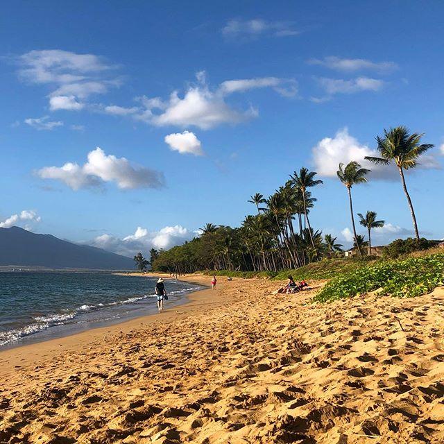 Wishing I was back in paradise | Maui 🌴 - #kihei #maui #travel #beachlife #aloha #latergram #hourfun #tbt