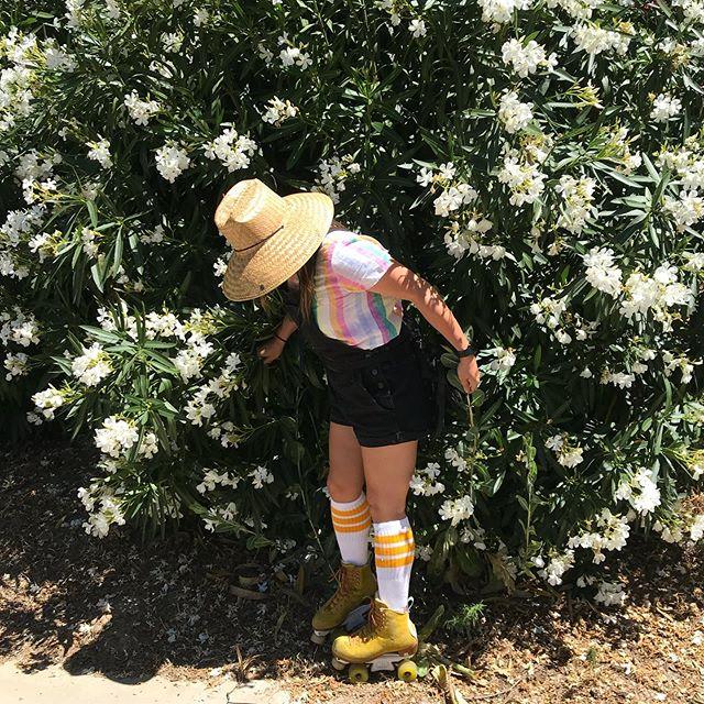 Summer vibes here in #sacramento ✌️as @iloveyoon 📸 me for the #hobbylobbychallenge 🌼 - #amidoingthisright #moxirollerskates #skatersocksusa #summer #ootd #whatamidoing #rollerskates #skate