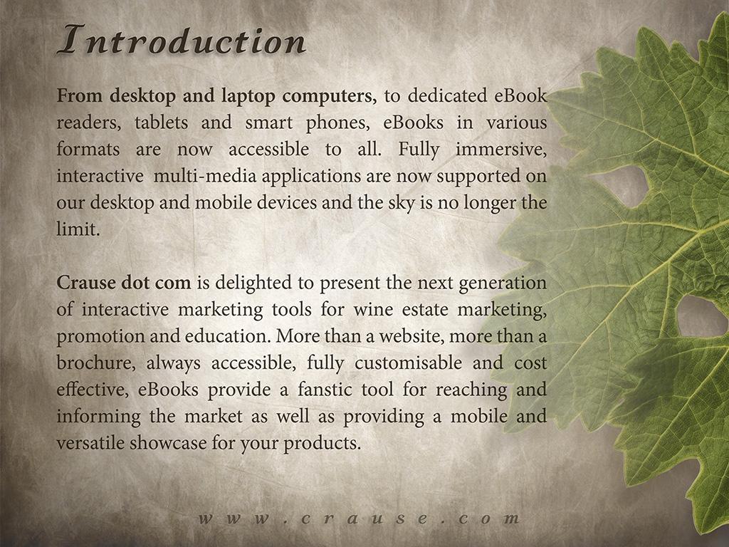 eBookDemo_Intro2.jpg