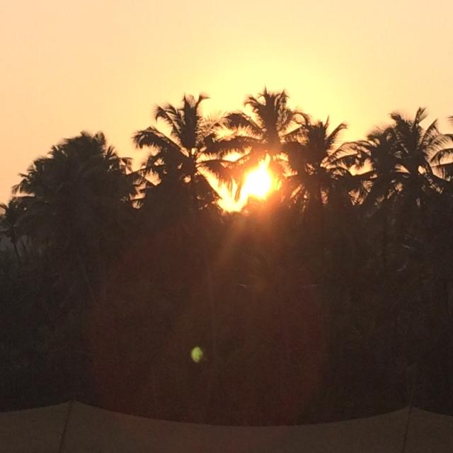 Indian Sunsetnear Mandrem Beach, Goa