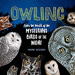 This books is featured in support of our 5/4 Book Author Talk texturing Mark Wilson.   From Hedwig, the Snowy Owl of Harry Potter fame, to Winnie-the-Pooh's beloved friend Owl ,  this wide-eyed bird of the night has found its way into young hearts and imaginations everywhere.  Owling  invites young readers into the world of real-life owls, to learn about their fascinating behaviors and abilities.