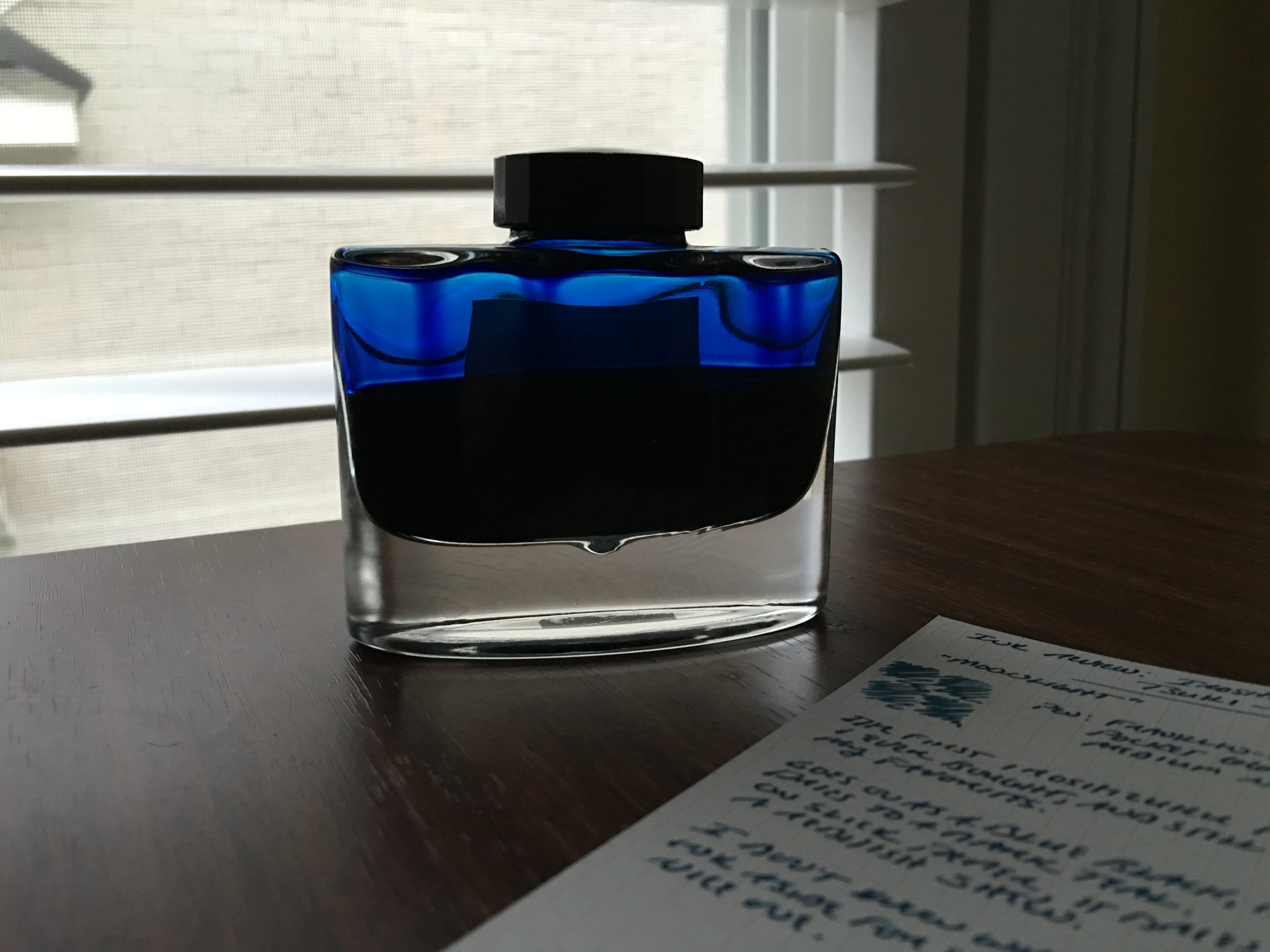 A half-full bottle of fountain pen ink? Can you believe it? Must be good...