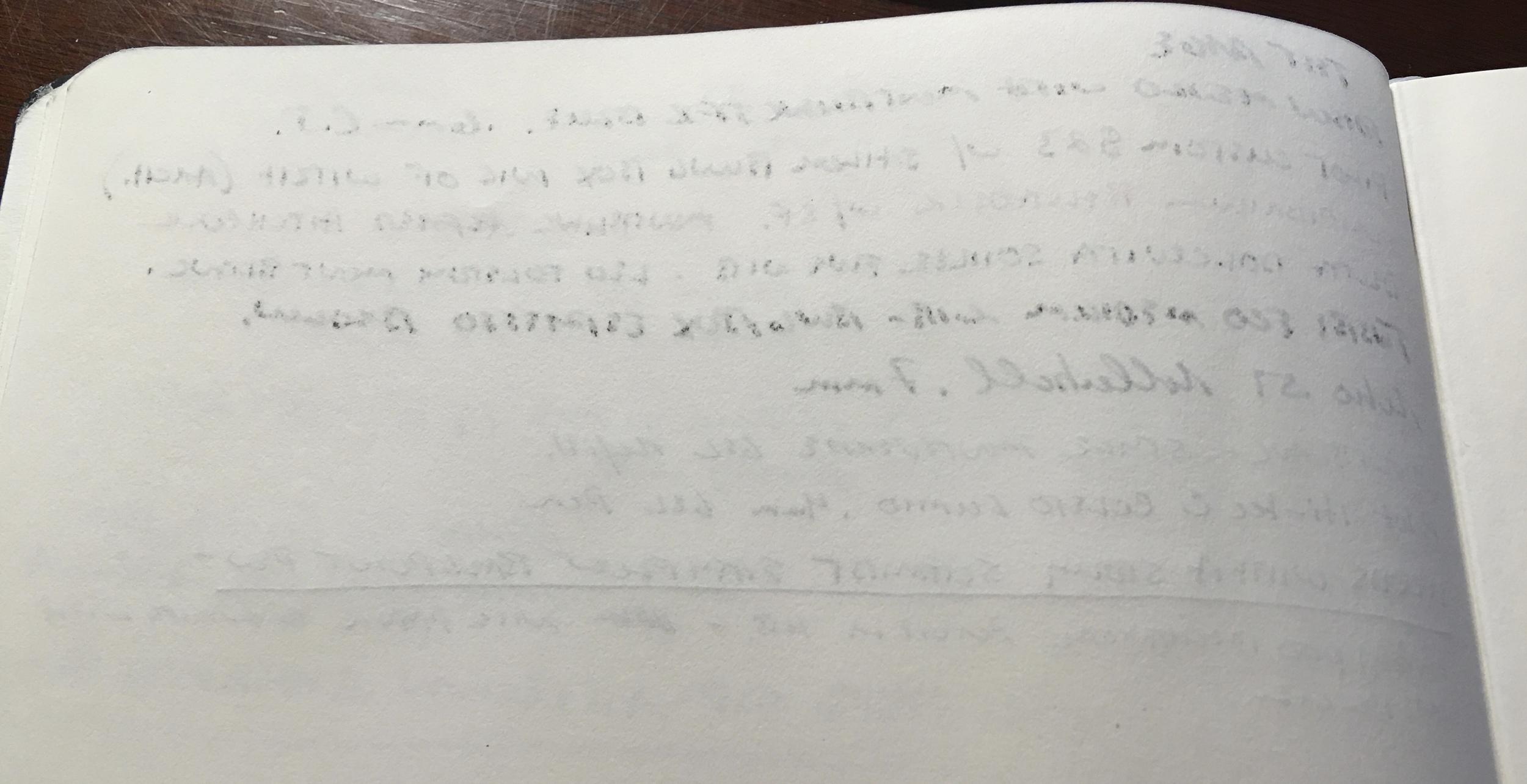 Reverse Monsieur Writing Sample