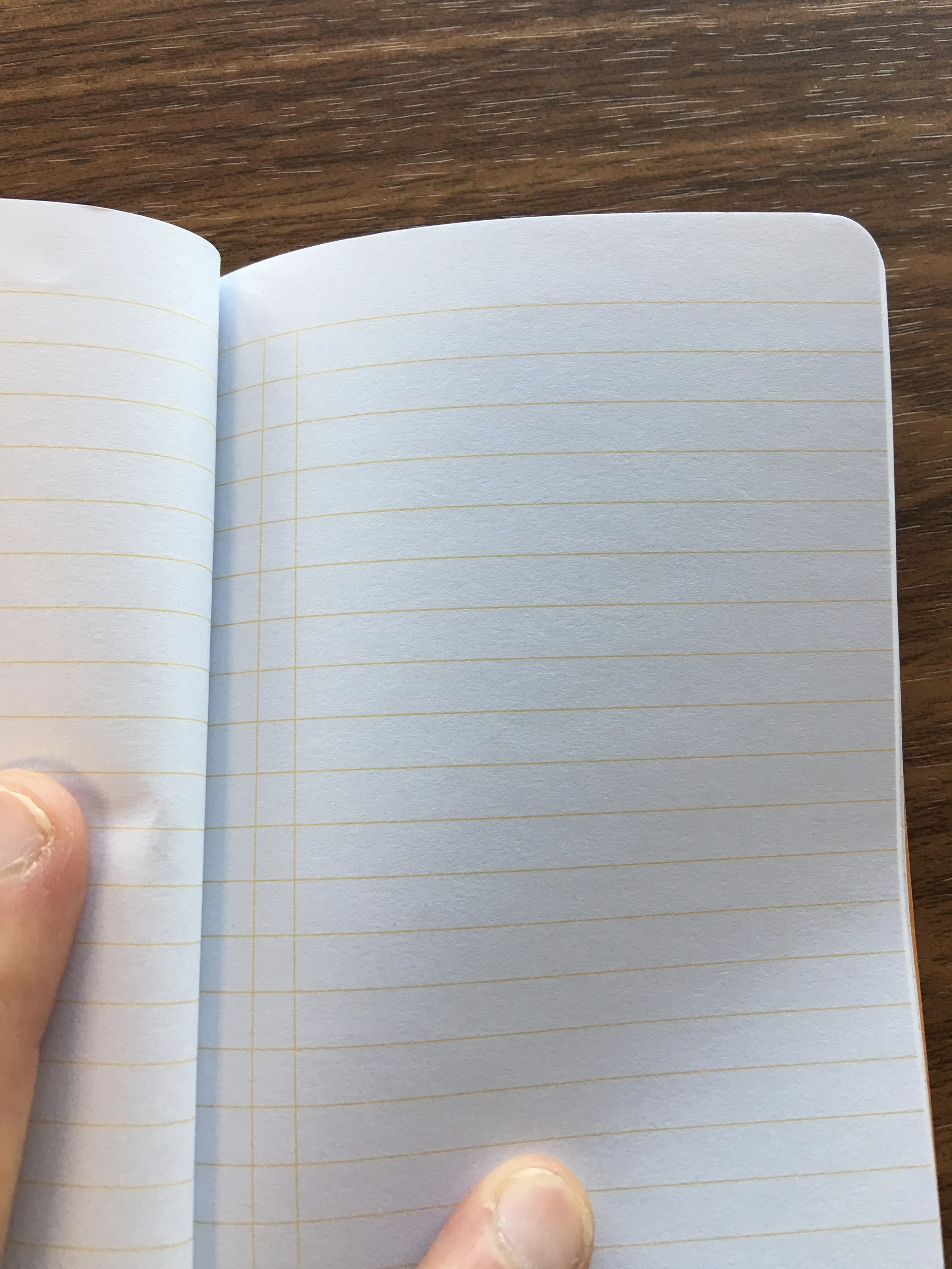"""Ruled paper isn't typically my favorite, but I do like the """"boxes"""" in the left-hand margin, which makes this notebook good for bullet journal-style lists."""