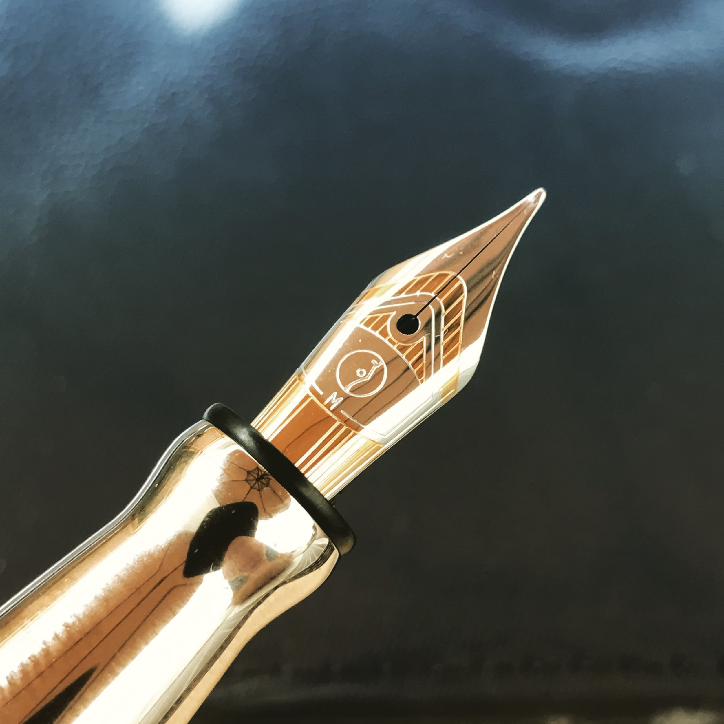 I found the detailing on this nib really attractive. I like the understated Otto Hutt logo.