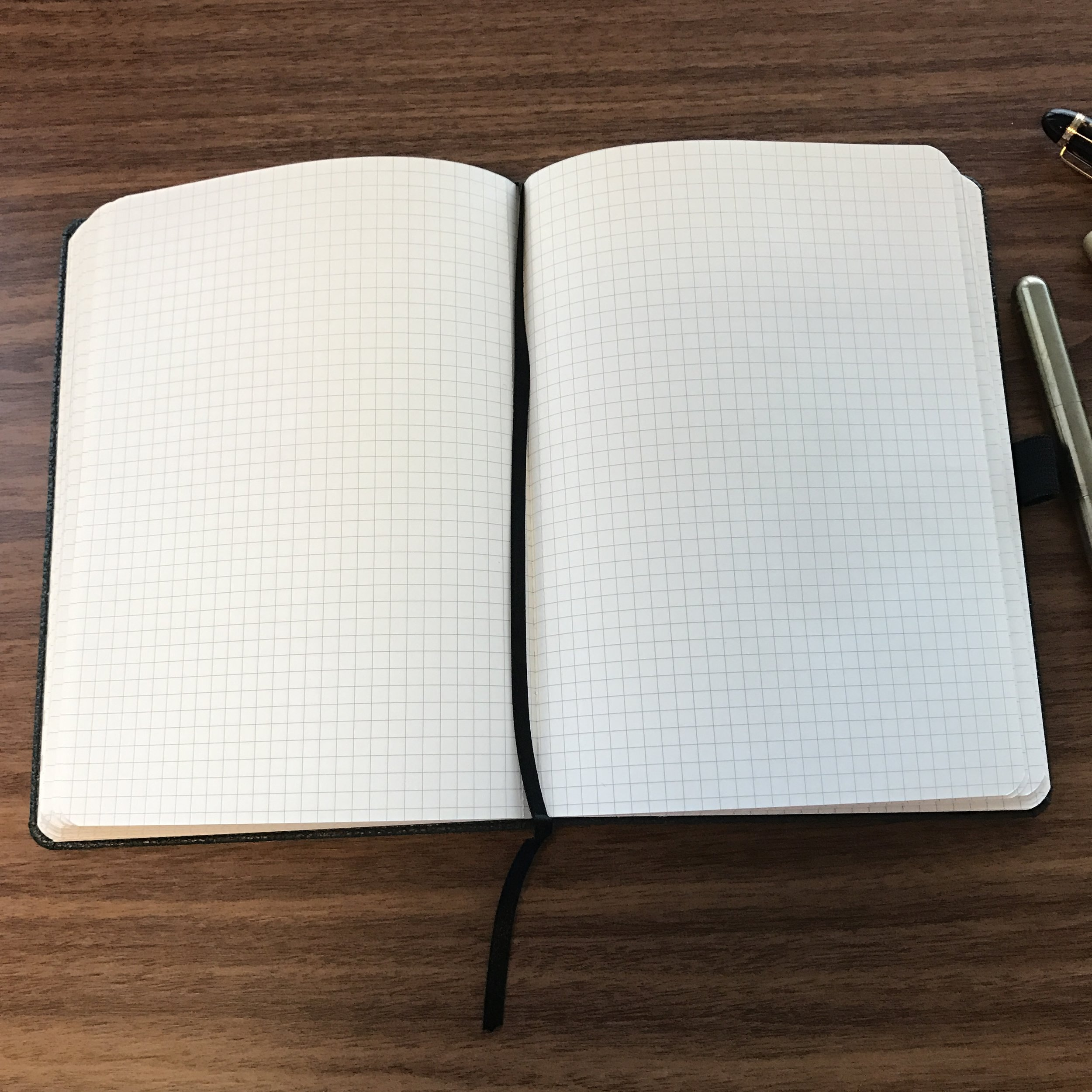 One great feature of the Dingbats* notebook is that it lays completely flat when open.
