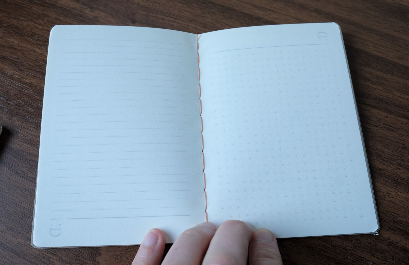 "The center of the book, with lined ruling on the left, and reticle grid on the right. You ""flip"" the notebook, depending on which type of paper you want to use. The Say Nice Things Logo should appear at the bottom of the page."