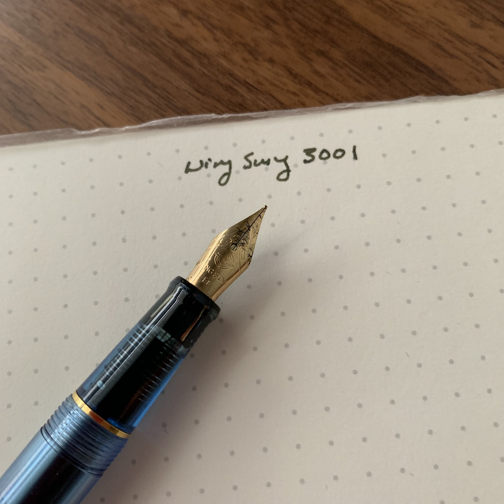 Wing Sung pens have excellent nibs, in my experience. Most are paired with a transparent plastic feed.