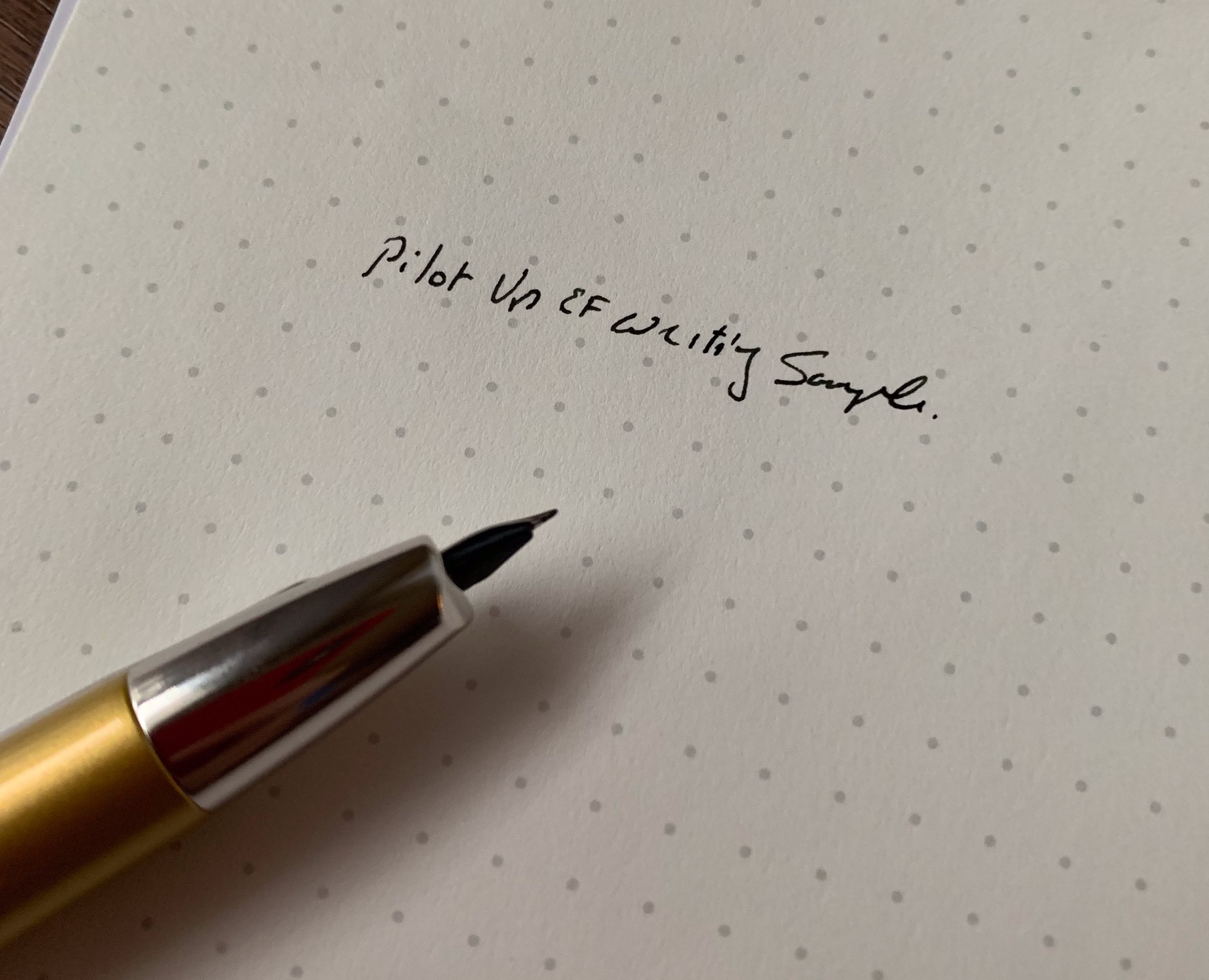 Pilot-Decimo-Extra-Fine-Writing-Sample