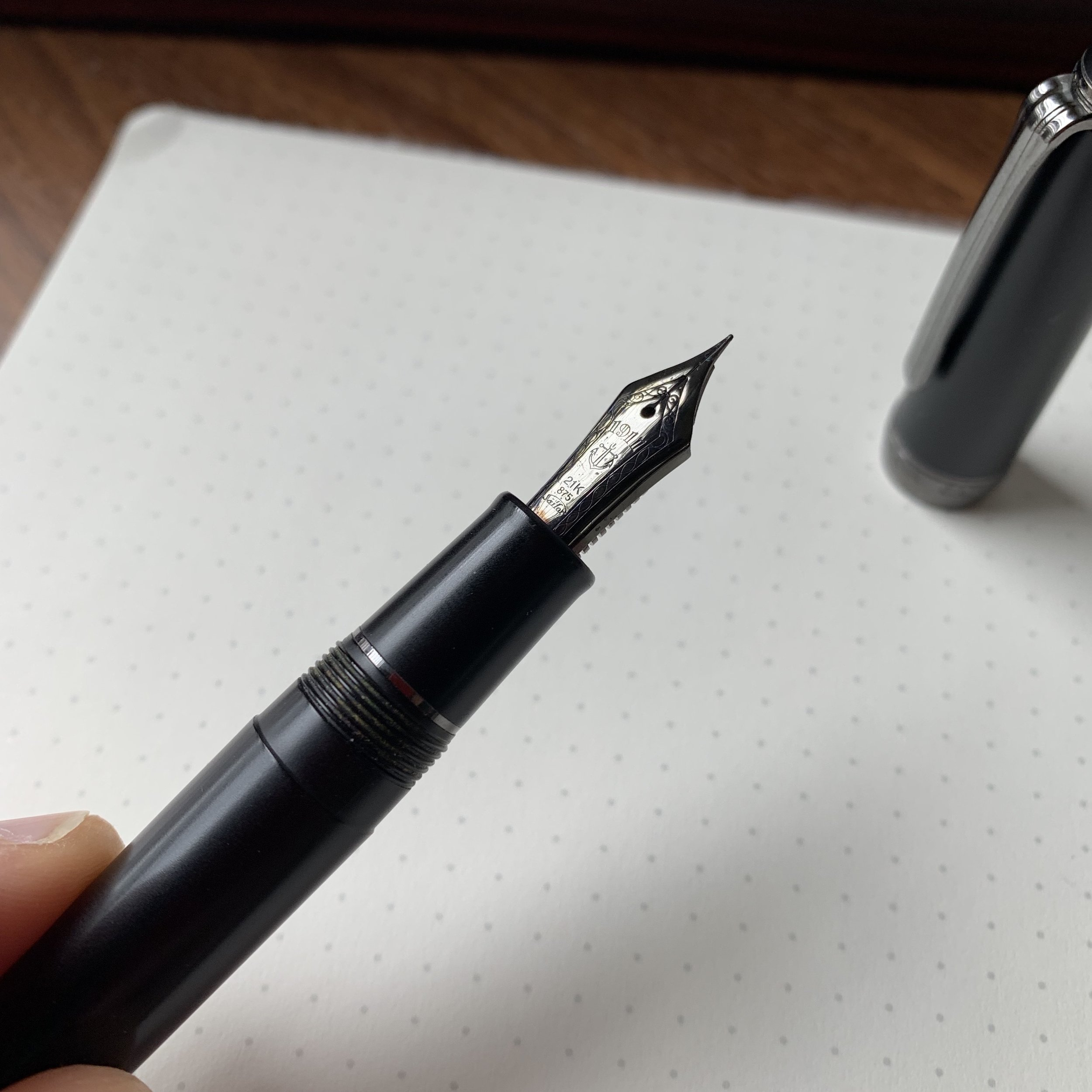 Both the strength and the weakness, the plated 21k nib is an exceptional writer and looks great, but, at least in the fine width, can easily be sprung, and the plating can wear off if you grind the nib.