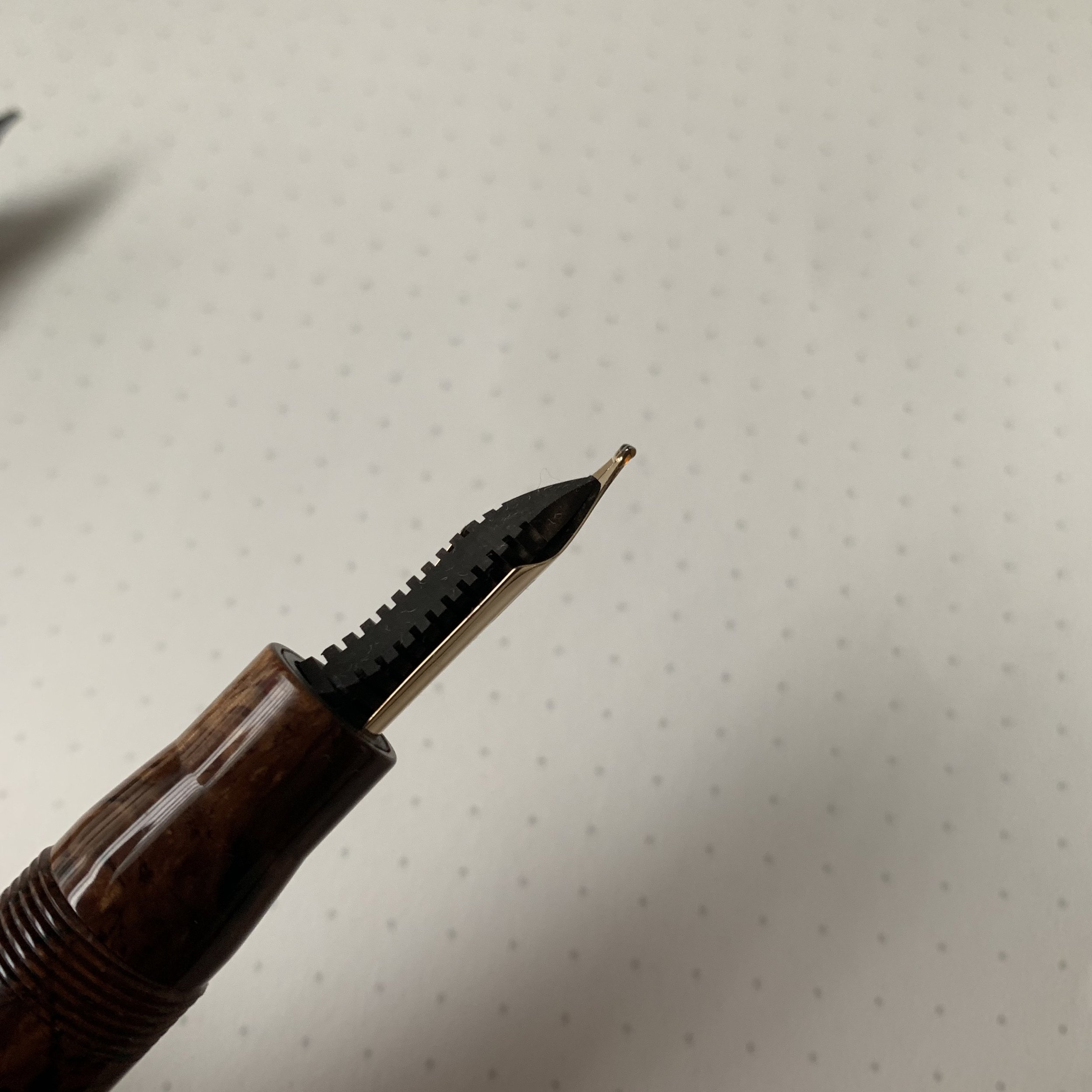 Leonardo Nib and Feed