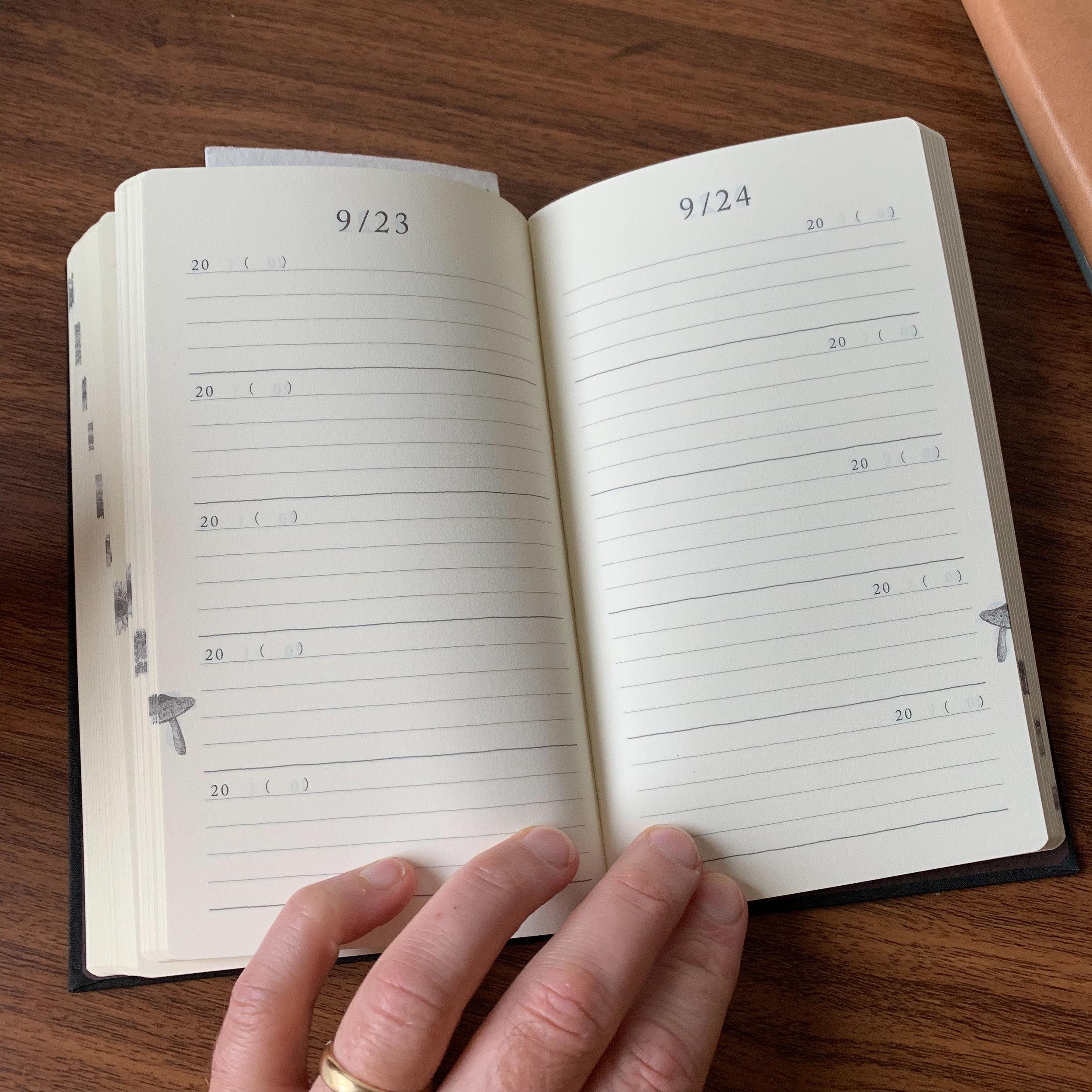 Midori-5-Year-Diary-Open