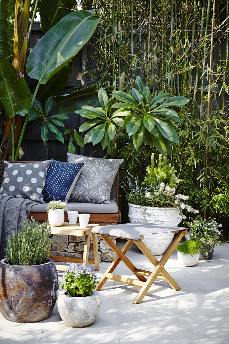 CLASSIC LOOK  pots from Garden Life and Tate, cushions and throws Tait and The Design Hunt, plants Alpine Nurserie, photography by Natalie Hunfalva