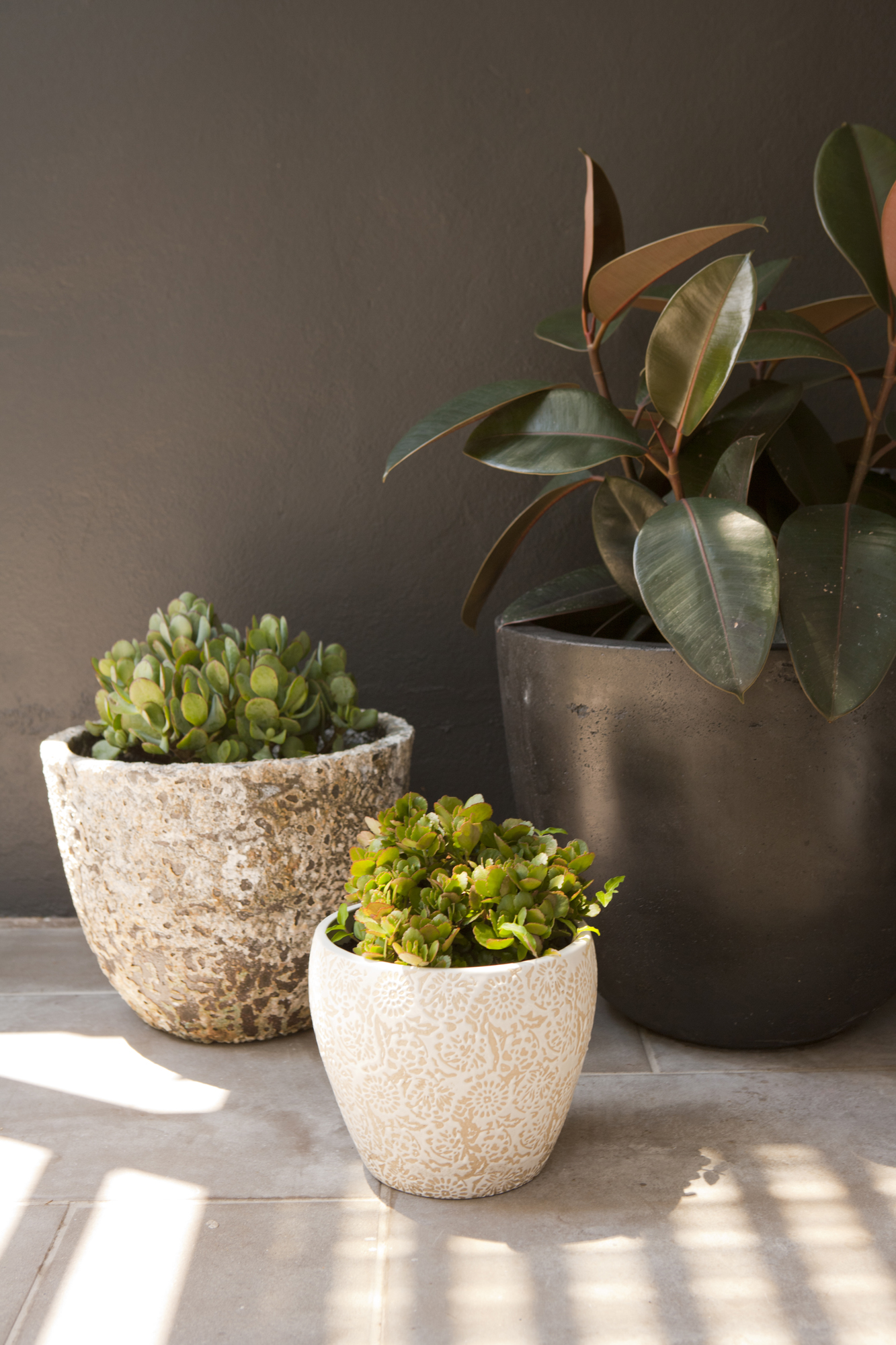 creating a feature with a  cute pot cluster