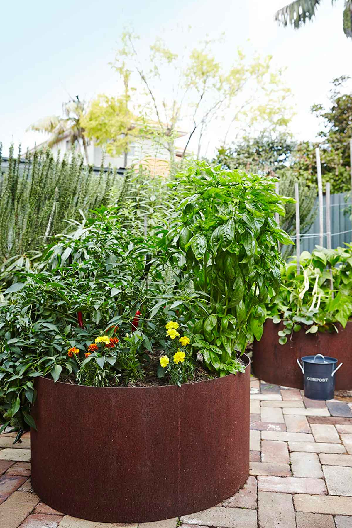 A good soak once a week for garden beds is best. Image by Natalie Hunfalvay from our  Kingsford project