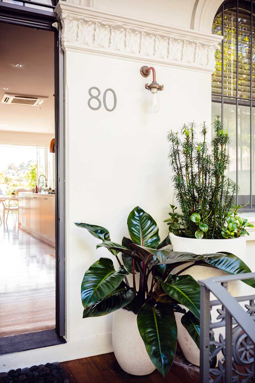 © Adam Robinson Design – Sydney Outdoor & Landscape Design and Styling – Gardening Tip Leaf Shine.jpg