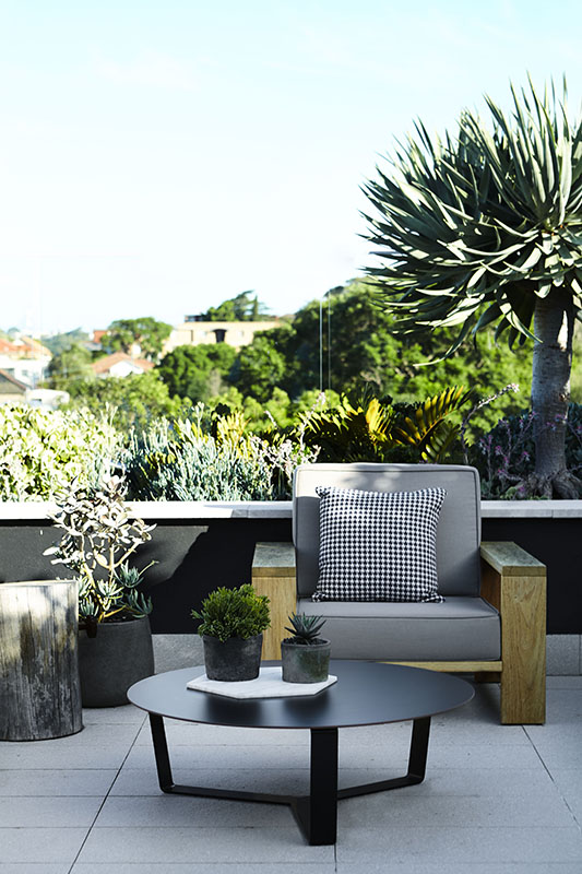 Solid and bold. A new fave chair of ours from our  Drummoyne Rooftop & Balcony Garden project .