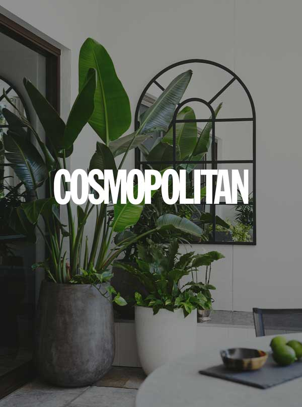Cosmopolitan UK - 'Ways to use plants to make your home look lovely'Jan 17, 2017