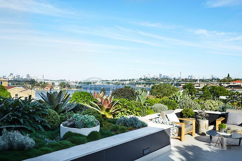 © Adam Robinson Design Sydney Outdoor Design and Styling Landscape Drummoyne Garden 01.jpg