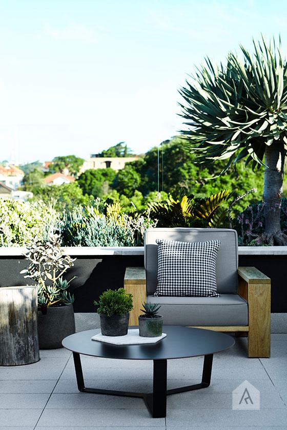 © Adam Robinson Design Sydney Outdoor Design and Styling Landscape Drummoyne Garden 04.jpg