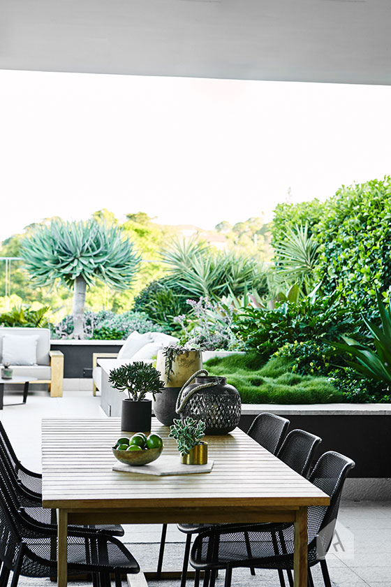 © Adam Robinson Design Sydney Outdoor Design and Styling Landscape Drummoyne Garden 05.jpg