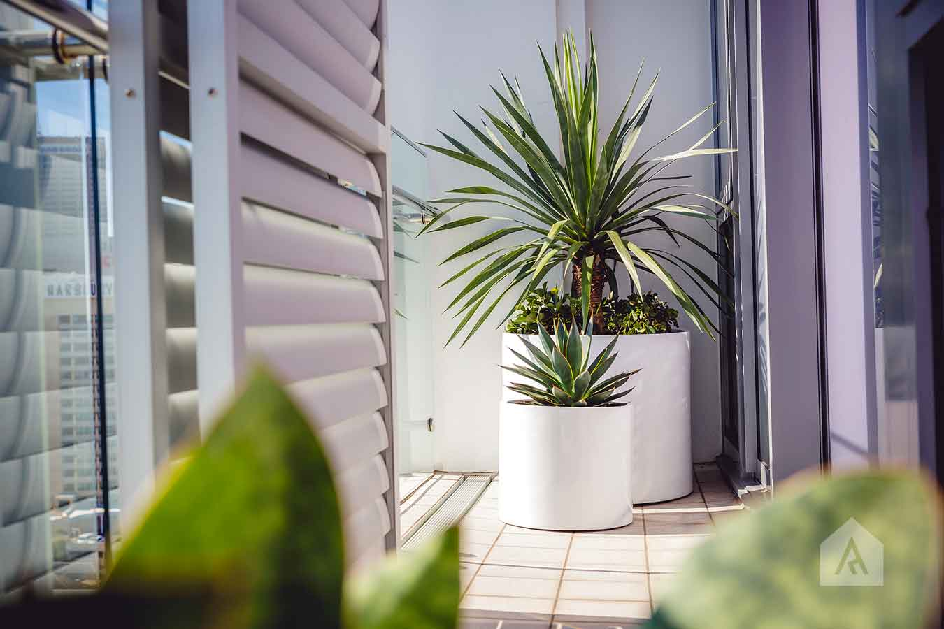 ©-Adam-Robinson-Design-Milson's-Point-Balcony-by-Chanelle-Ockenden-05.jpg