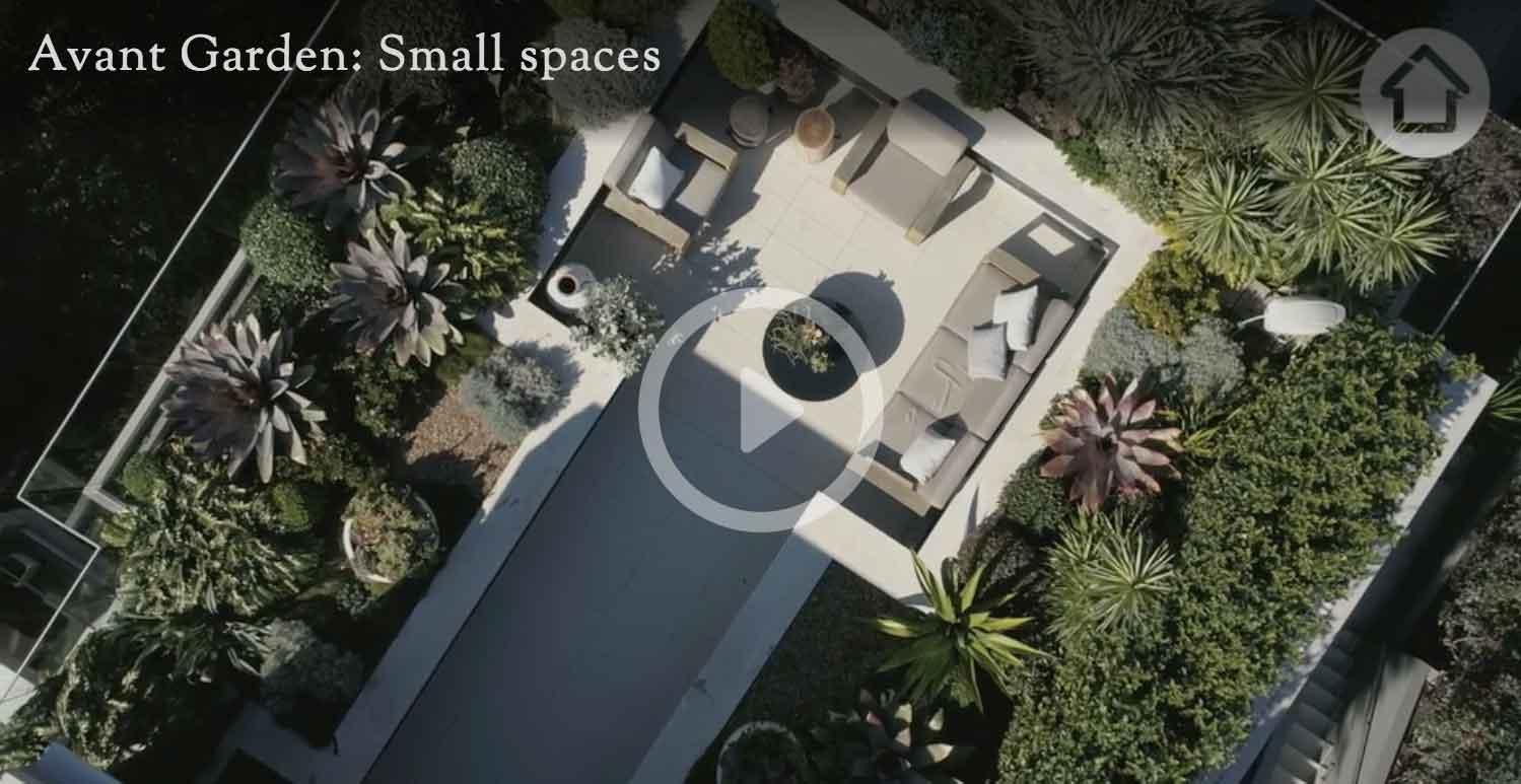 Adam Robinson Design Rooftop Garden Sydney How to create big impact in a small garden realestate.com.au.jpg