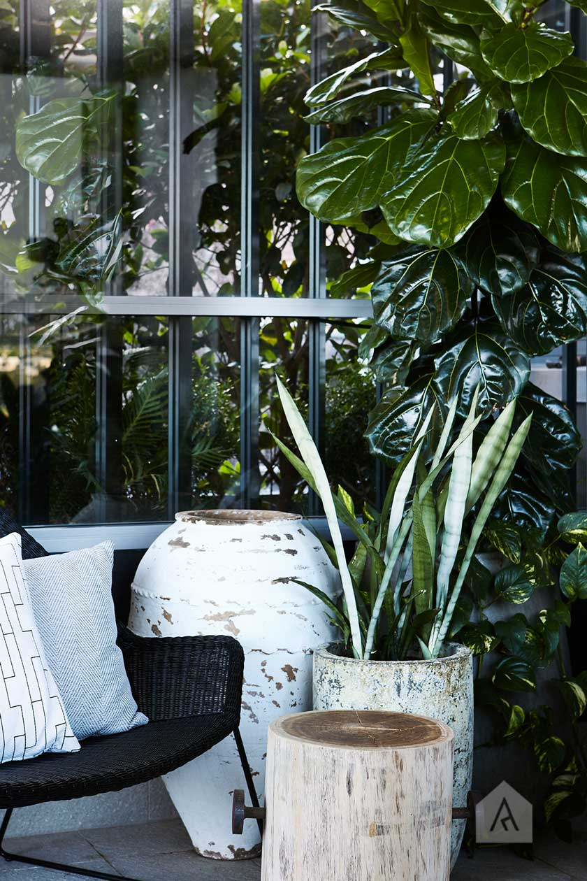 Define with colour. Image from our  Drummoyne rooftop and balcony garden project