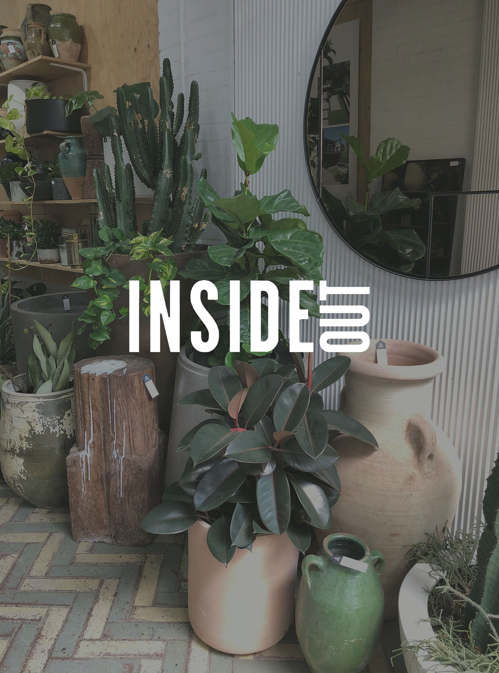 Inside Out - 'The Biggest Trends in Indoor Plants and How to Care For Them'Feb 14, 2018
