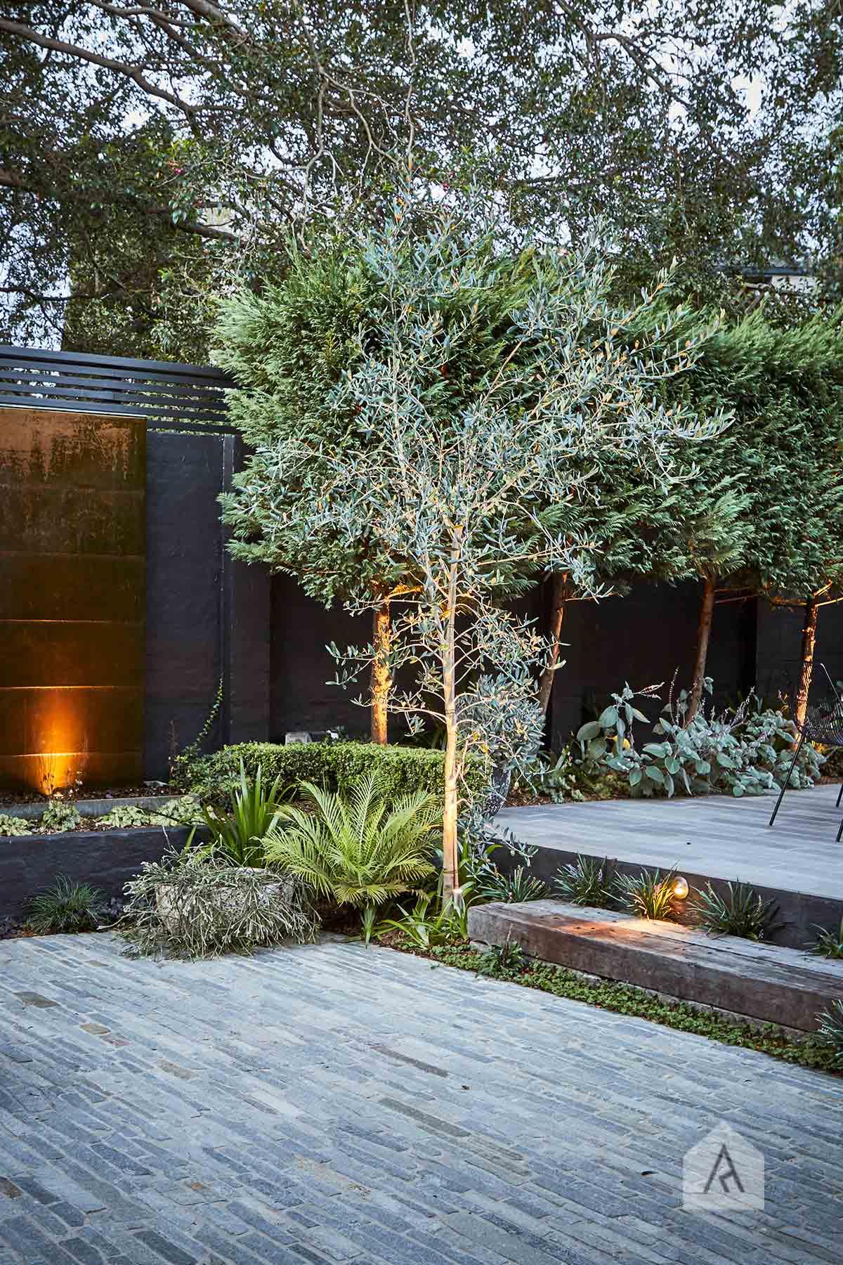 © Adam Robinson Design Garden Appreciation 5.jpg