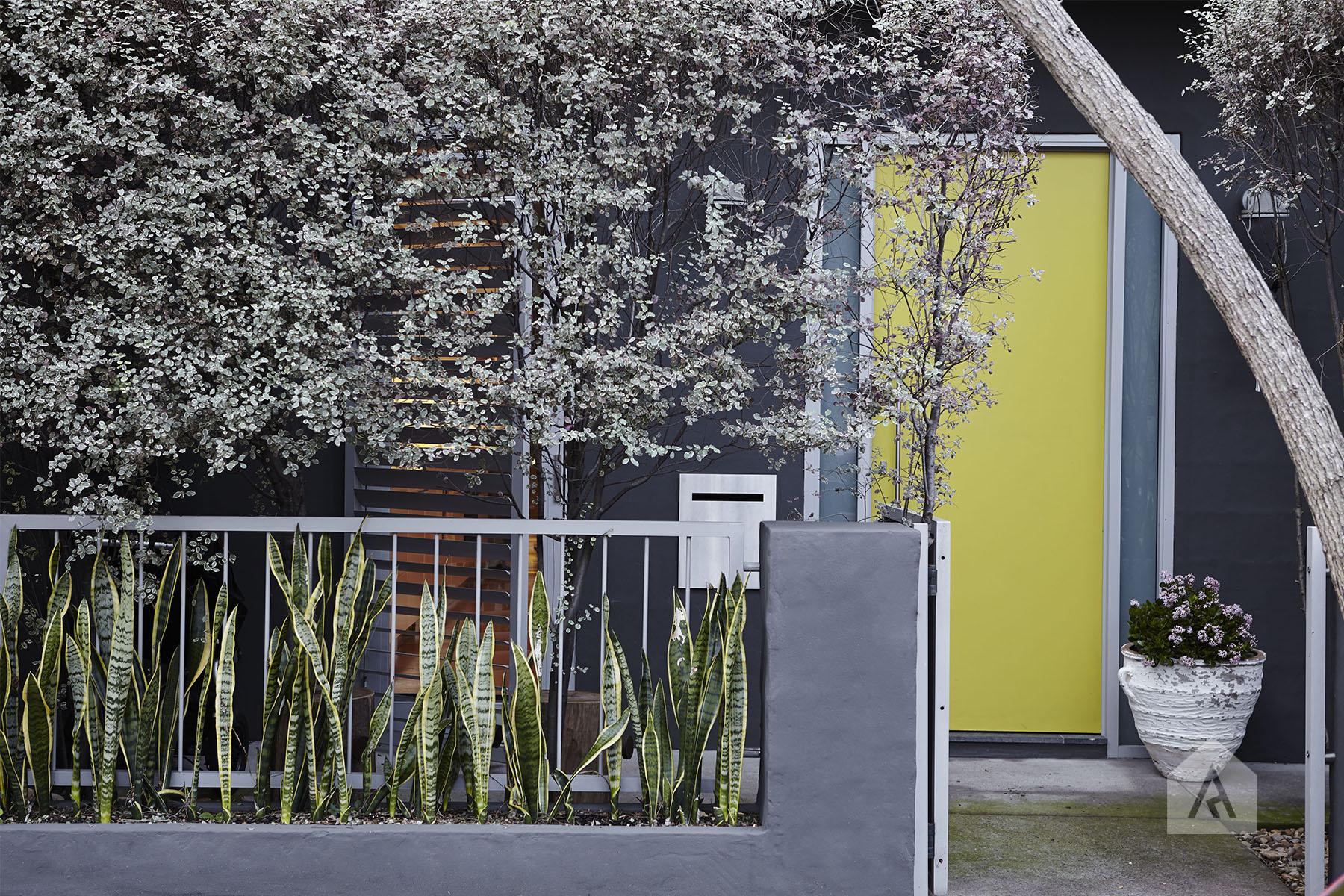 © Adam Robinson Design Front Garden 05.jpg