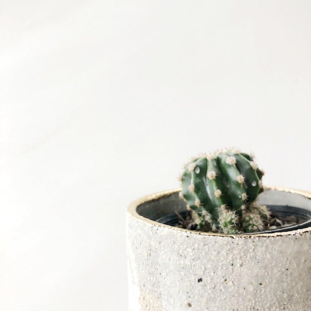 Adam Robinson Design A Good Ceramicist 03.jpg