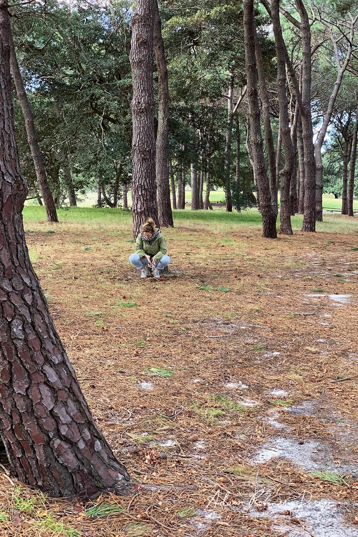 ©-Adam-Robinson-Design-Nurture-Your-Nature-Sydney's-First-Annual-Forest-Bathing-Event-09.jpg