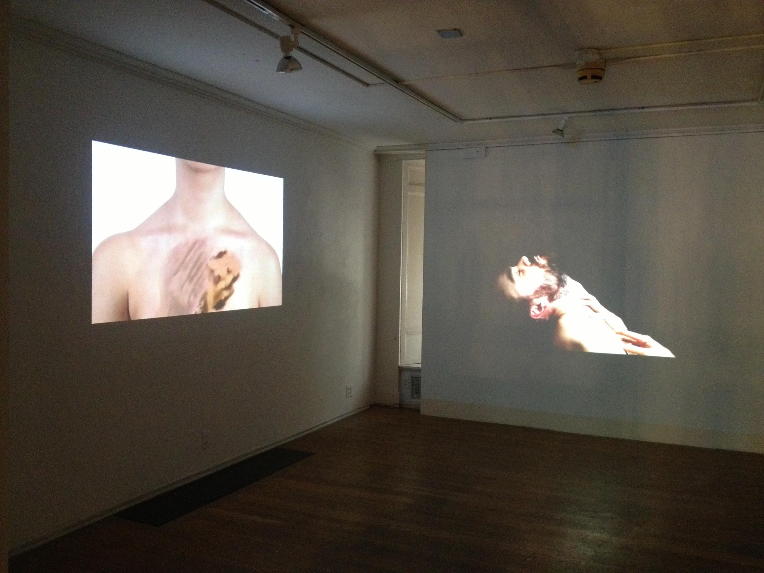 "Evanston Art Center Biennial Opening  ""When there was joy"" next to Dan Paz great video pieces."