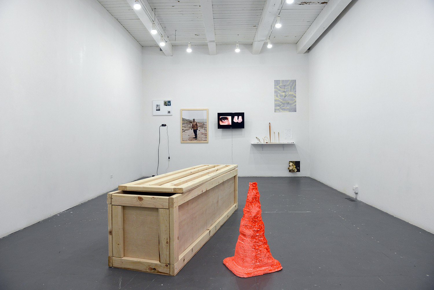 Installation view, Preview IV, Chicago Artist Coalition. 2015