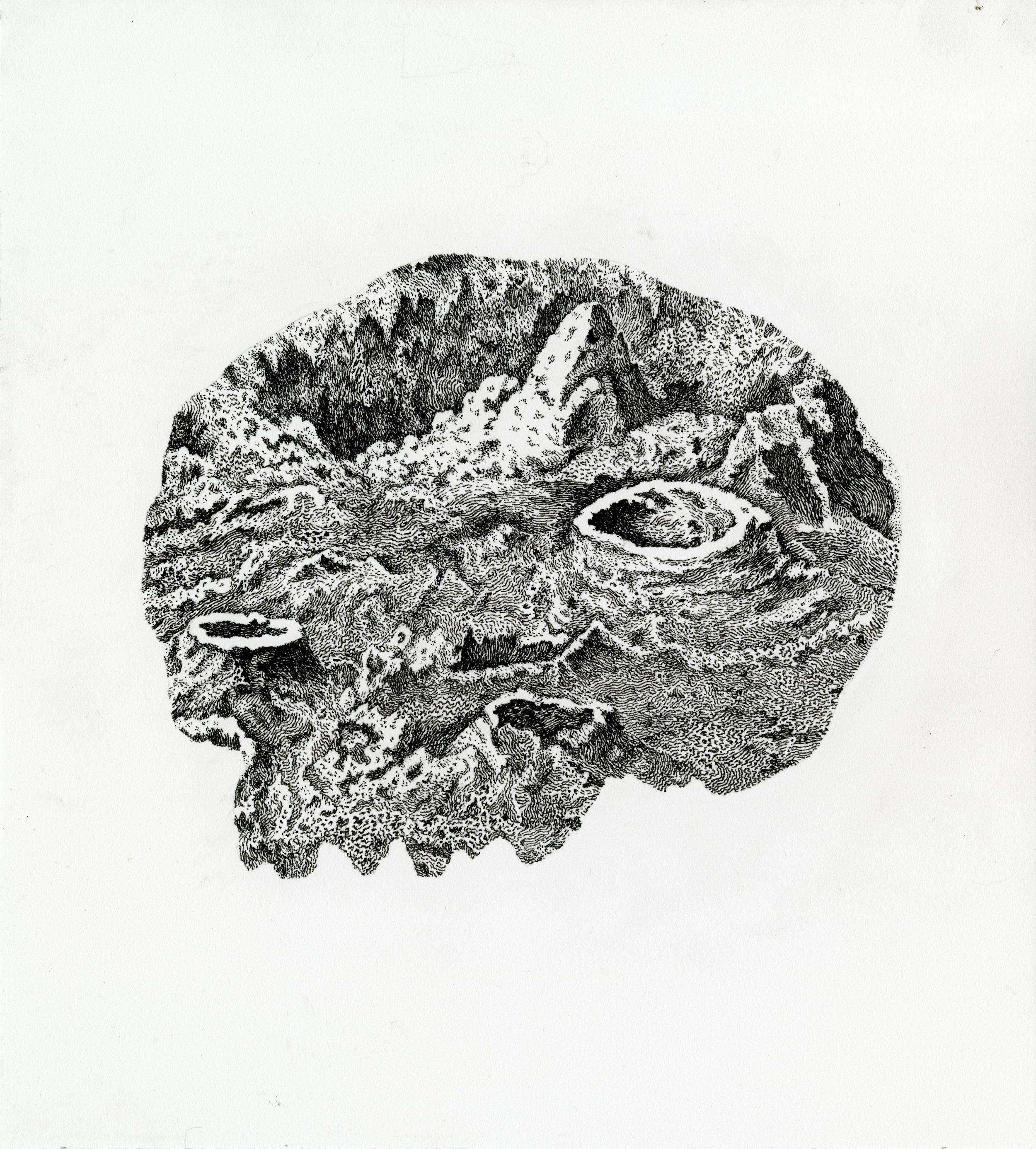 Moon Skull.jpg