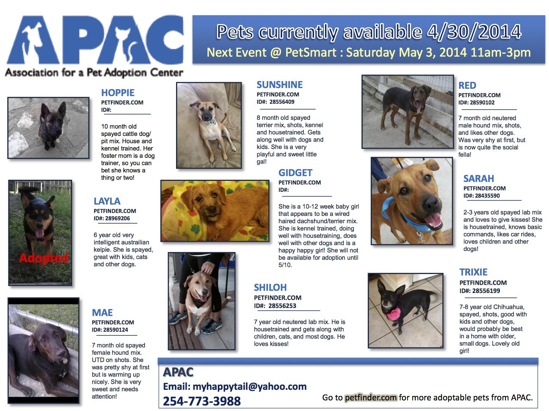 APAC fosters 04302014 B.jpg