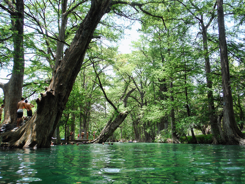swimming hole the blue hole wimberly texas