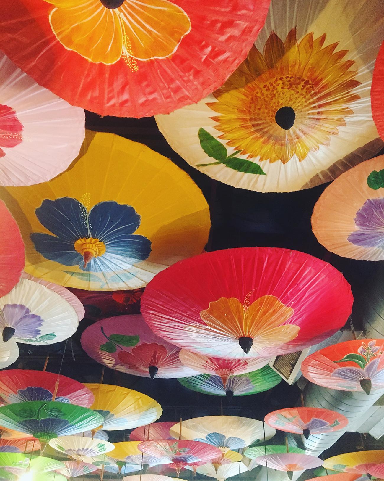 umbrellas-darcy-wheeler.jpg