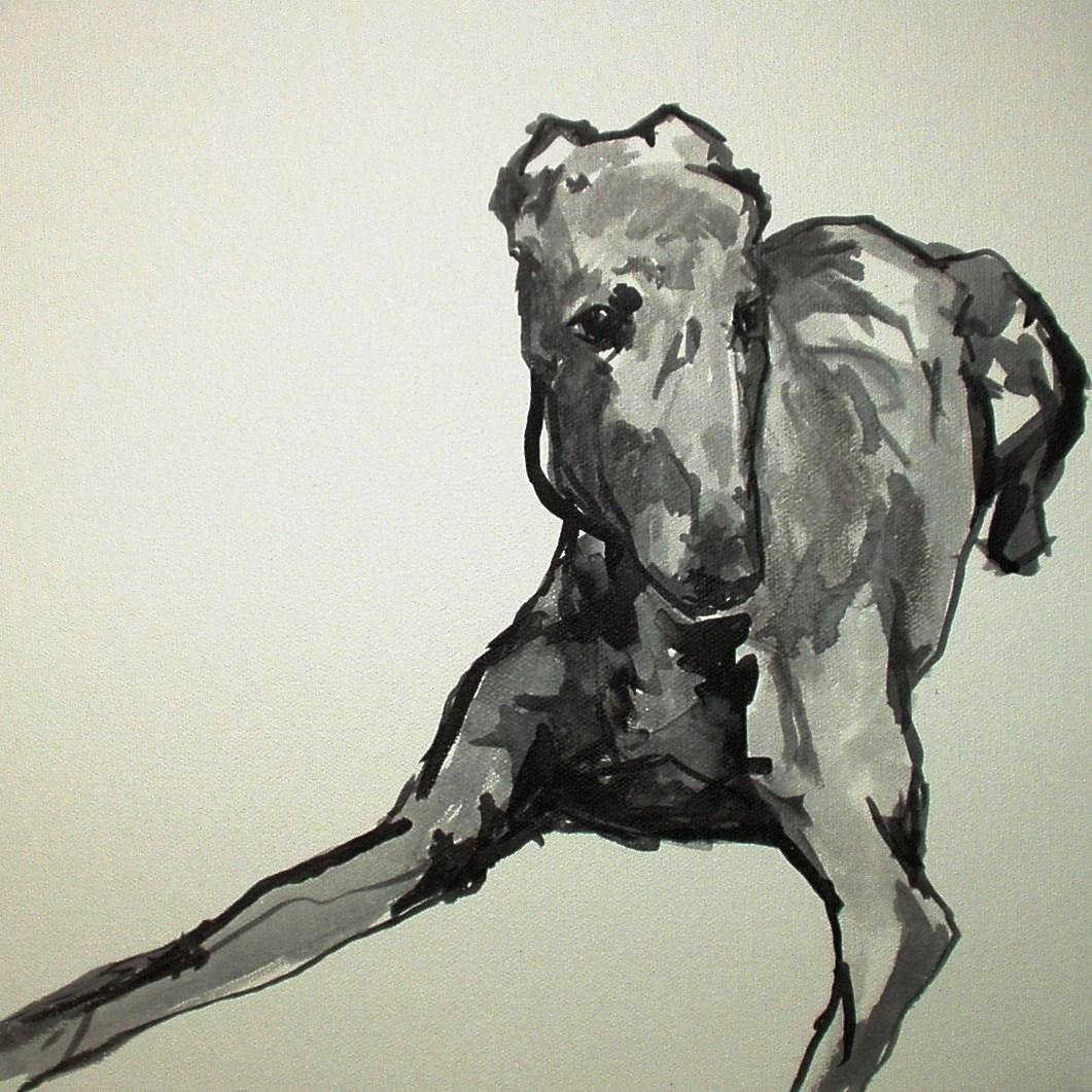 Dog & Horse Fine Art , Ian Mason, Sight Hound.JPG