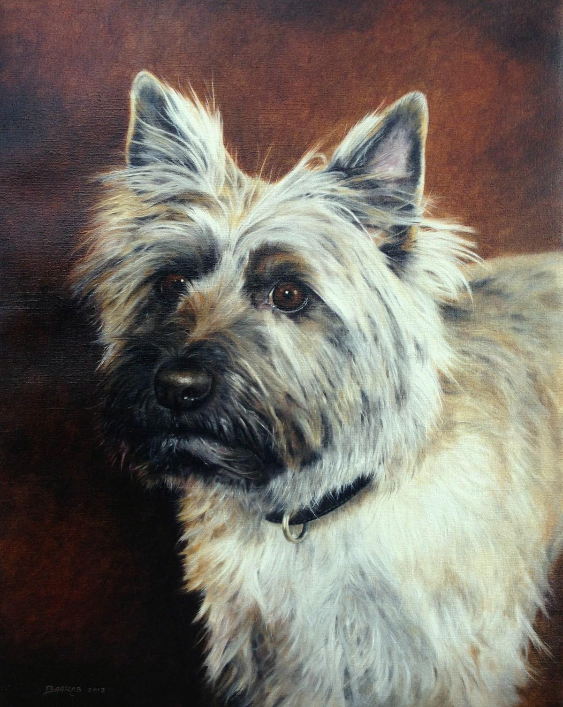Dog & Horse Fine Art,  Anita Baarns, Maestro.JPG