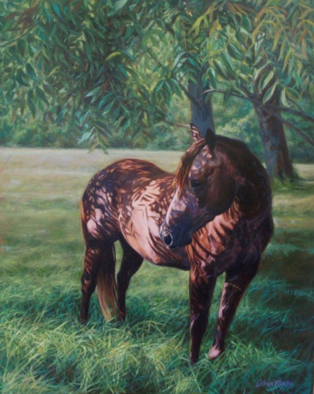 Dog & Horse Fine Art, Catrina Monroe, missfrancesinthewalnutgrove.jpg