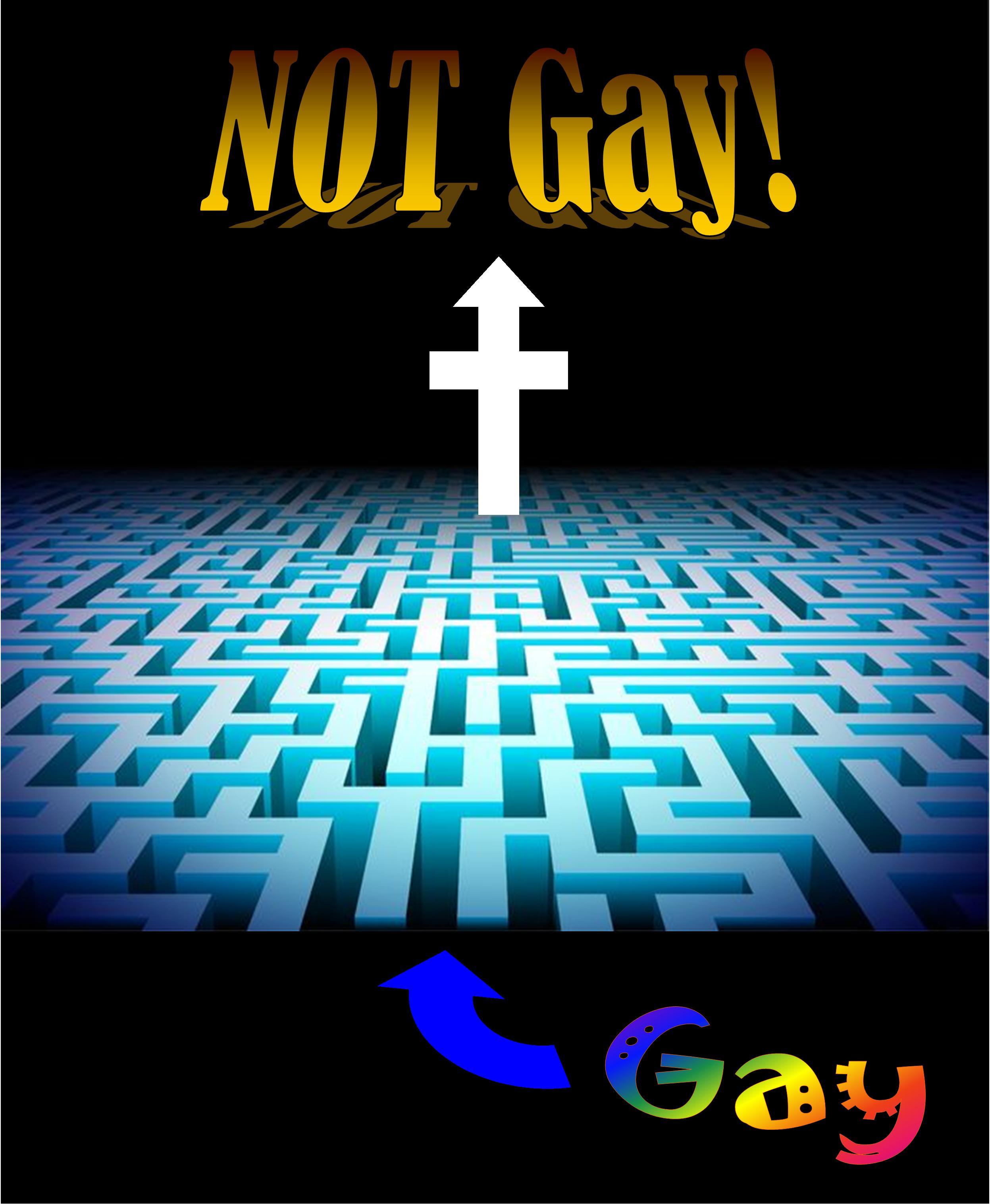 gay-not-gay-maze.jpg