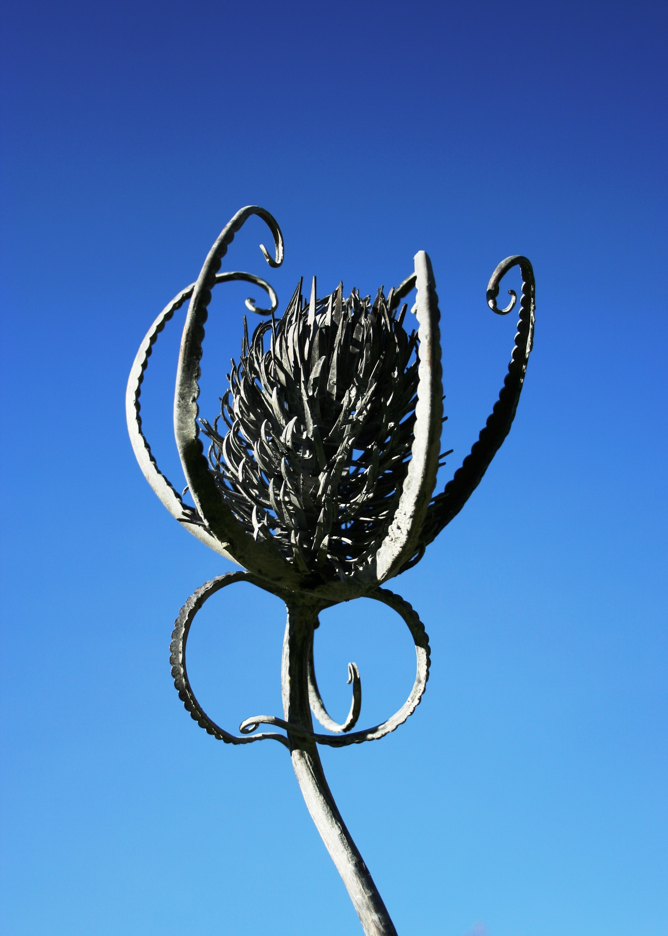 Teazle_Sculpture_2.JPG