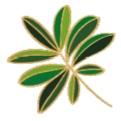 Full+leaf+ant.jpg